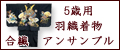 七五三 5歳 男の子の羽織・袴フルセット(合繊)
