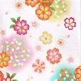 画像4: 産着 お宮参りの着物 日本製 女の子のお祝い着(初着) 正絹【白地 菊と桜】