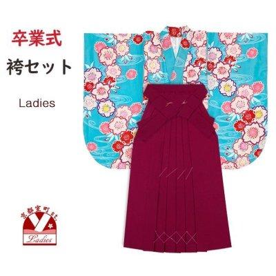 画像1: 袴セット 卒業式 女子用 短尺 古典柄の小振袖(二尺袖の着物)と無地袴のセット【水色、梅】