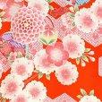 画像4: 九重(ここのえ) ブランド お宮参り 女の子 着物 初着 産着 お祝い着(合繊) 日本製 襦袢付き【朱赤系、桜に貝桶】 (4)