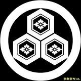 [貼り付け家紋(家紋シール)]丸に三つ盛亀甲に花菱