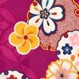 画像4: 七五三 着物 7歳 女の子 古典柄の子供着物(合繊)【赤紫系、雪輪と菊】 (4)