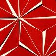 画像3: 卒業式の着物 小紋柄の二尺袖 単品 ショート丈 フリーサイズ【赤、麻の葉】 (3)