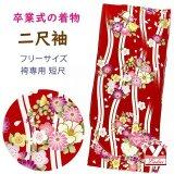 卒業式の着物 小紋柄の二尺袖 単品 ショート丈 フリーサイズ【赤、縦枠と花輪】