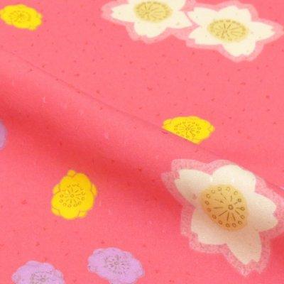 画像3: <七五三セール!> 3歳 女の子 総柄の子供着物 単品(合繊)【ピンク系 桜と梅】 ※襦袢付き