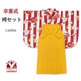 袴セット 卒業式 女性用 モダン柄の小振袖(二尺袖の着物)と無地袴のセット 合繊【赤系、ストライプ柄】