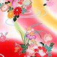 画像4: お宮参り 着物 女の子 刺繍入り 赤ちゃんのお祝い着 (初着 産着) 正絹【赤ぼかし おしどり】