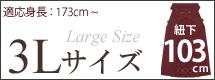 3Lサイズ