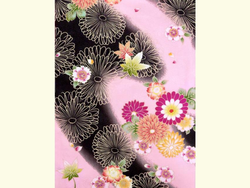 画像3: 卒業式 袴セット RKブランドの小紋の着物と【ピンク&黒、菊と桜・紅葉】シンプルな無地袴「ローズ」のセット