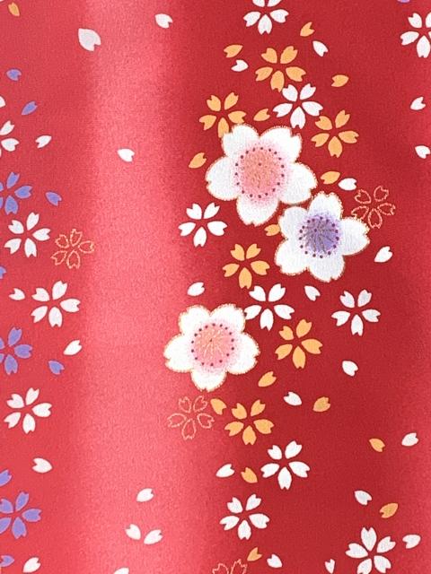 画像2: 七五三 着物 3歳 女の子 総柄の子供着物(合繊) 単品【赤ぼかし 桜】 ※襦袢付き