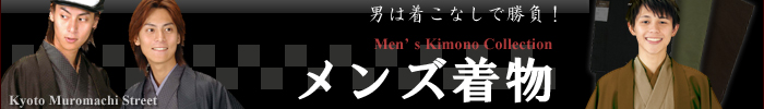 RK メンズ 洗える着物